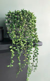 Trailing artificial senecio string of pearls plant