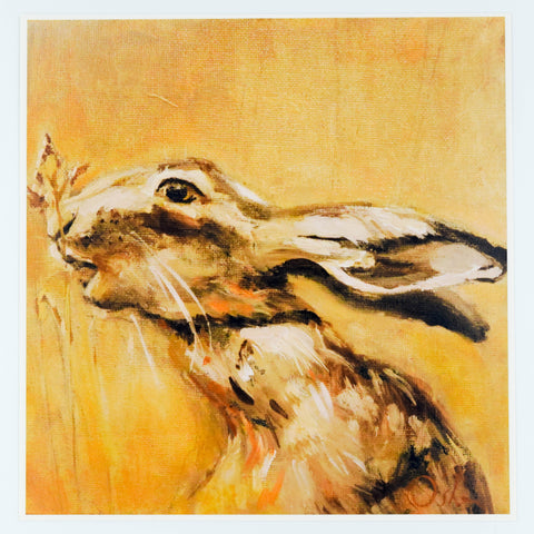 Animal Fine Art Giclee Print - Hare