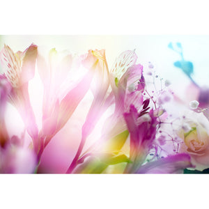 Abstract Bouquet Wall Mural