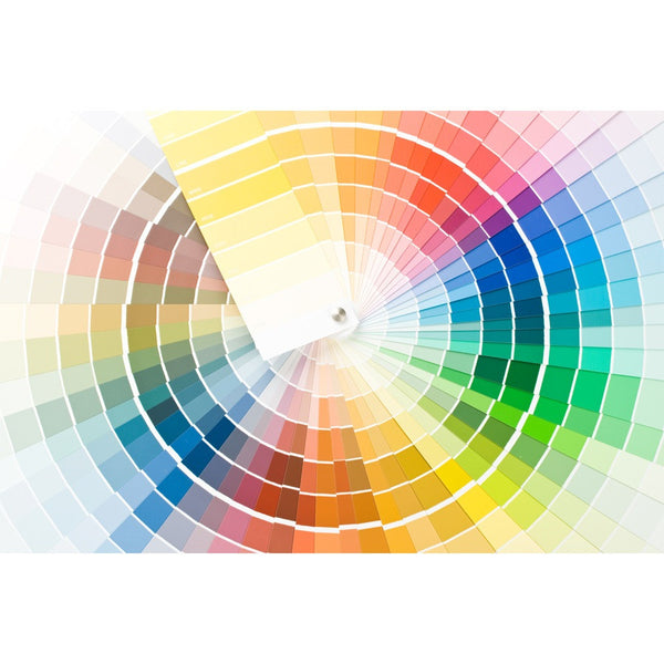 Abstract Color Guide Wall Mural
