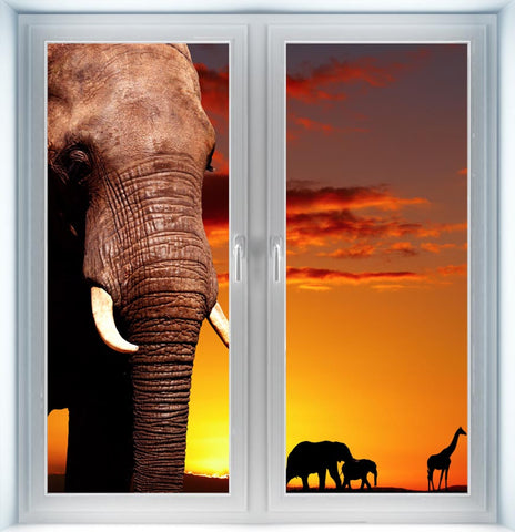 African Nature Concept Instant Window