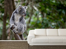 Load image into Gallery viewer, Australian Koala Wall Mural