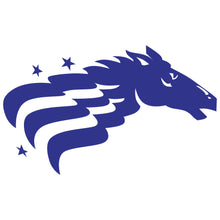 Load image into Gallery viewer, Baltimore Stallions Logo Wall Decal