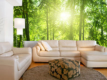 Load image into Gallery viewer, Bamboo Forest Wall Mural