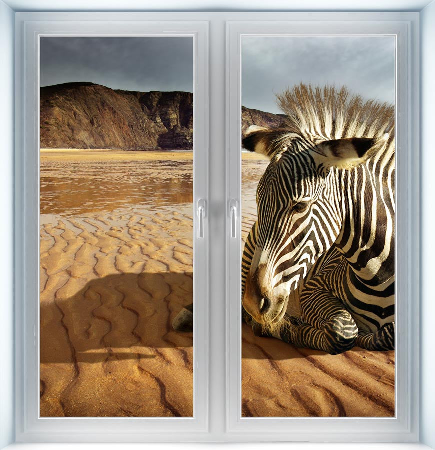 Beach Zebra Instant Window