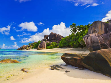Beach in Seychelles Wall Mural