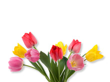 Load image into Gallery viewer, Beautiful Spring Tulips Wall Decal