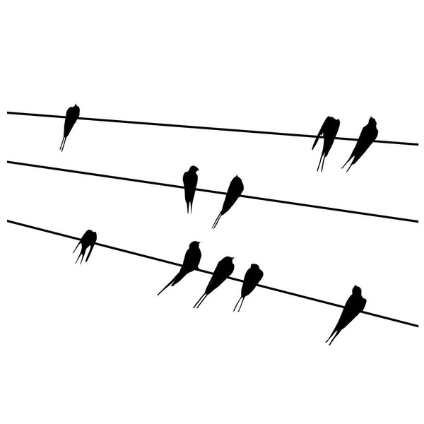 Birds on Power Line Wall Decal