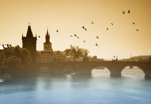 Birds over Charles Bridge in Prague Wall Mural