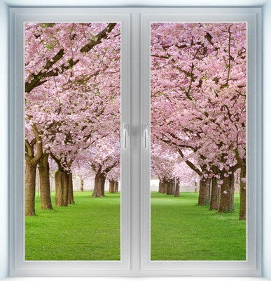 Blossoming Cherry Tree Instant Window