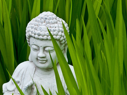 Buddha in Green Grass  Wall Mural