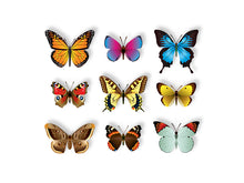 Load image into Gallery viewer, Butterflies Photo-realistic Vector Set