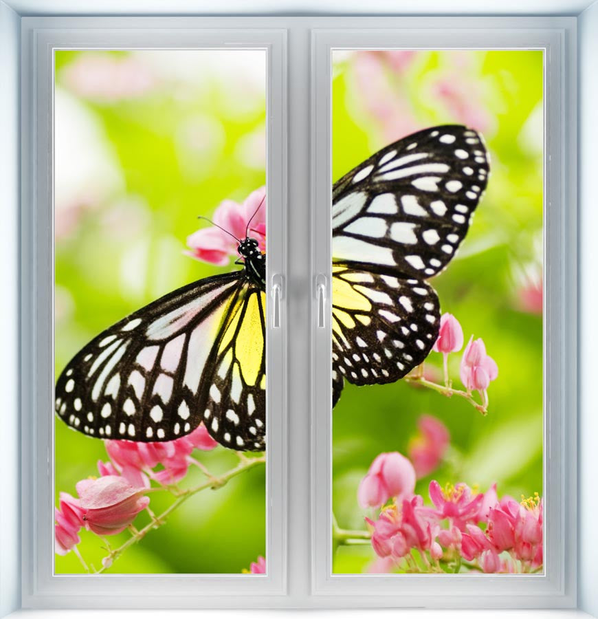 Butterfly on a Flower Instant Window