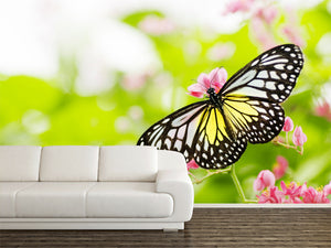 Butterfly on a flower Wall Mural