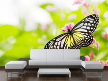 Load image into Gallery viewer, Butterfly on a flower Wall Mural