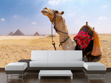 Load image into Gallery viewer, Camel and Pyramids Wire Wall Mural
