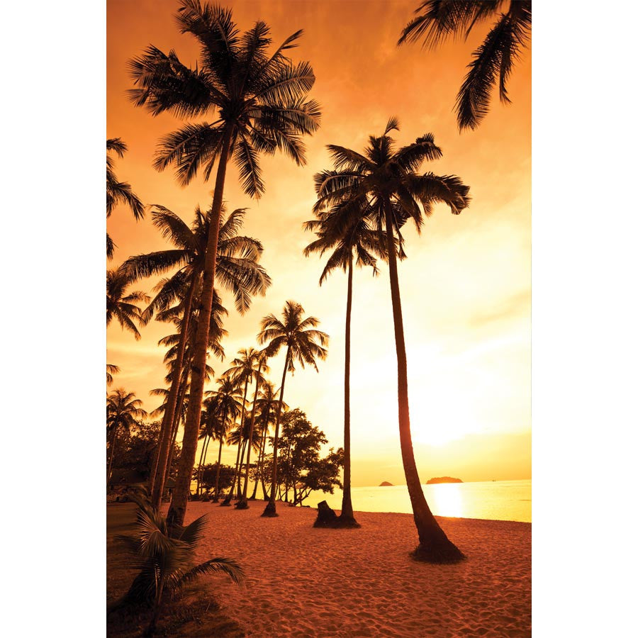 Coconut Palms at Sunset Wall Mural