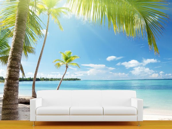 Coconut Palms in Sunlight Wall Mural