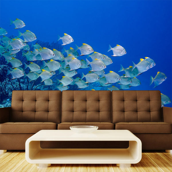 Dart Fish Wall Mural