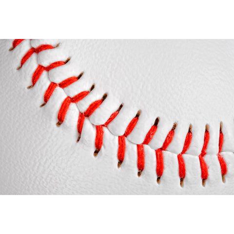 Detailed Baseball Wall Mural