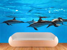 Load image into Gallery viewer, Dolphin Wall Mural