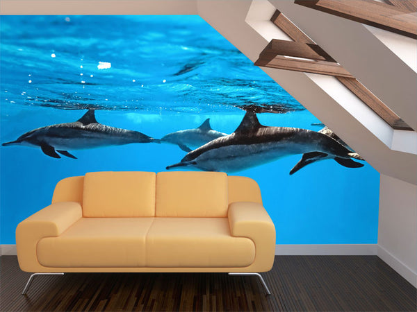 Dolphin Wall Mural