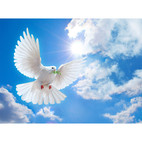 Dove Flying Wall Mural