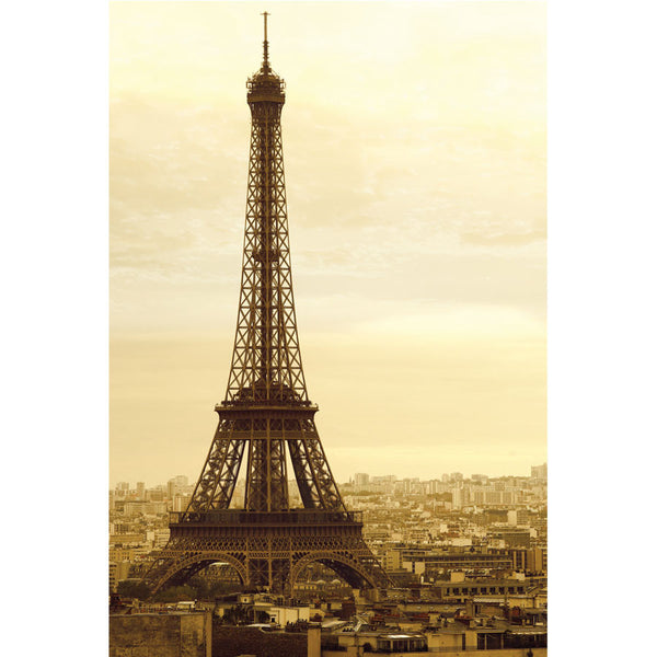 Eiffel Tower on a gloomy day Wall Mural