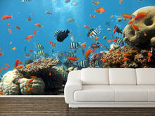 Load image into Gallery viewer, Fishes Wall Mural
