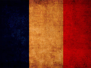 Flag of France Wall Mural