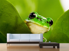 Load image into Gallery viewer, Frog Peeking Out  Wall Mural