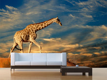 Load image into Gallery viewer, Giraffe on Sand Dune Wall Mural