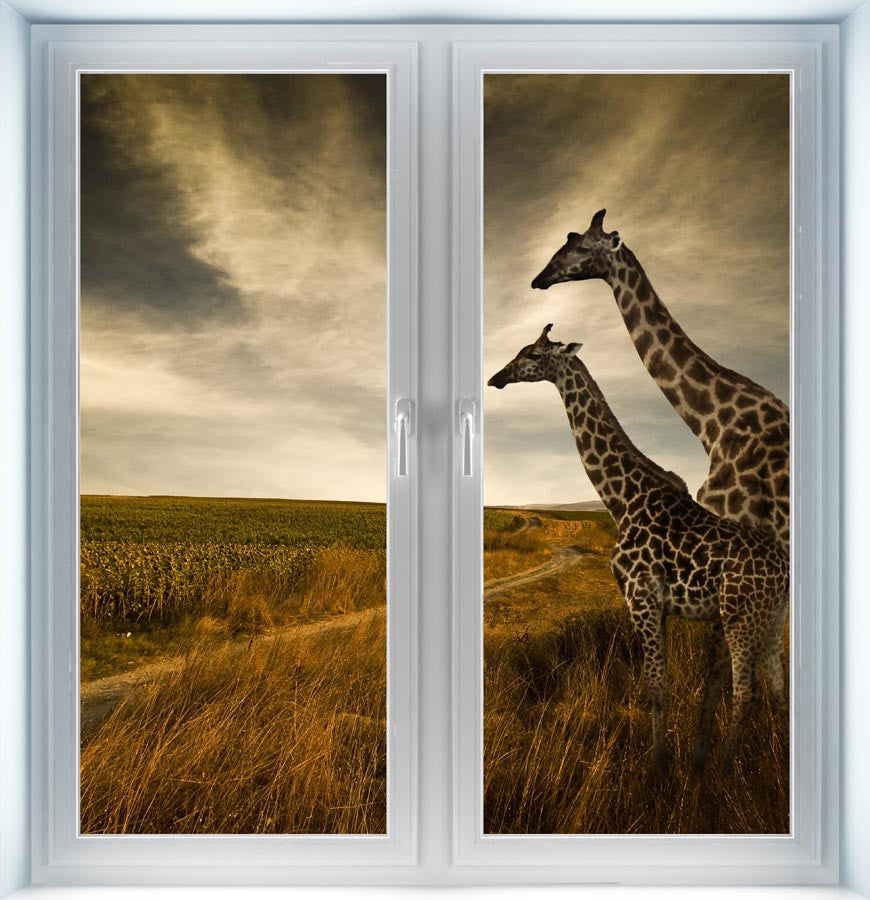Giraffes and the Landscape Instant Window