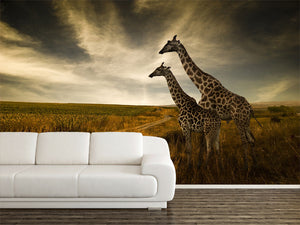 Giraffes and The Landscape Wall Mural