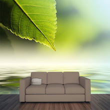 Load image into Gallery viewer, Green Leaf Reflecting In River  Wall Mural