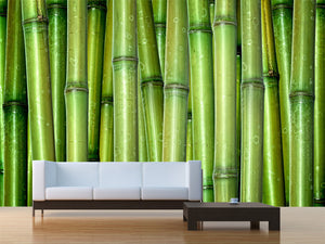 Green Bamboo Wall Mural