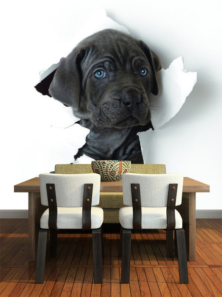 Black Puppy Wall Mural