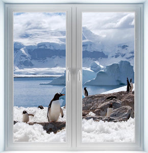 Group of Penguins Instant Window