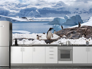 Group of Penguins Wall Mural