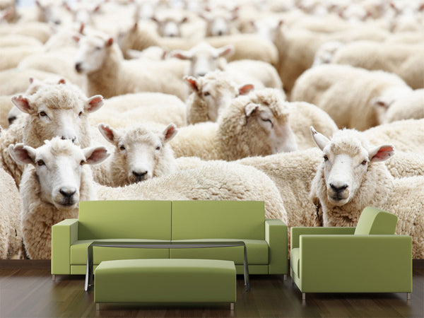 Herd of Sheep Wall Mural