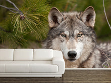 Load image into Gallery viewer, Intense Time Wolf Wall Mural