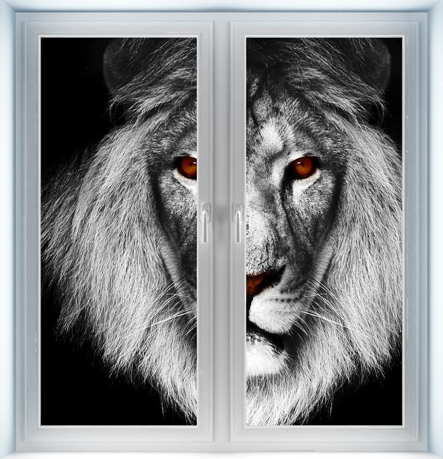 Lion Head Instant Window