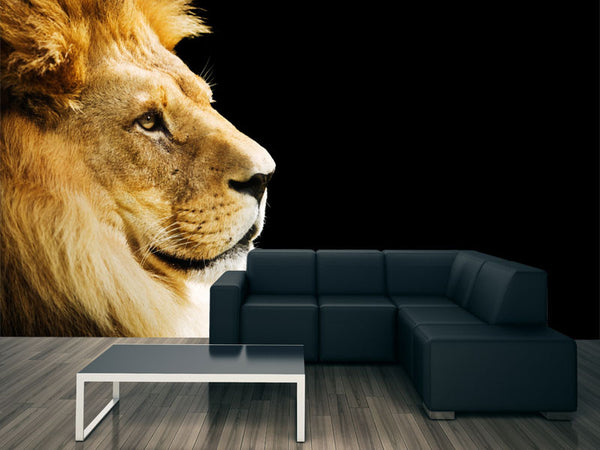Lion Portrait Wall Mural