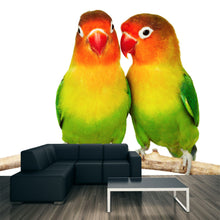 Load image into Gallery viewer, Pair of Love birds Wall Mural