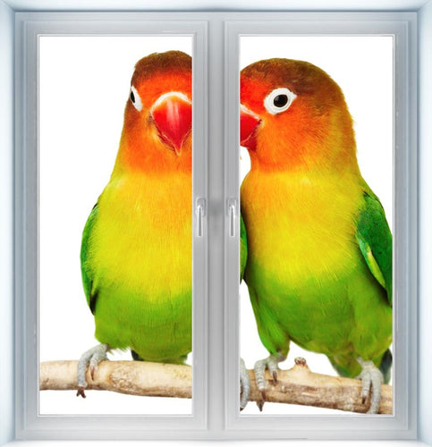 Pair of Love Birds Instant Window