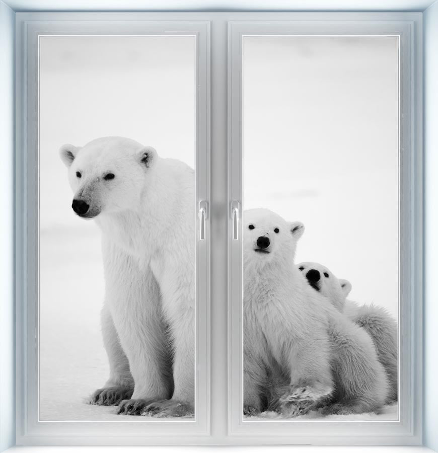 Polar Bear with Cubs Instant Window