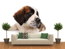 Load image into Gallery viewer, Puppy Saint Bernard Wall Mural