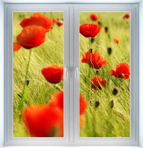 Red Poppies Instant Window