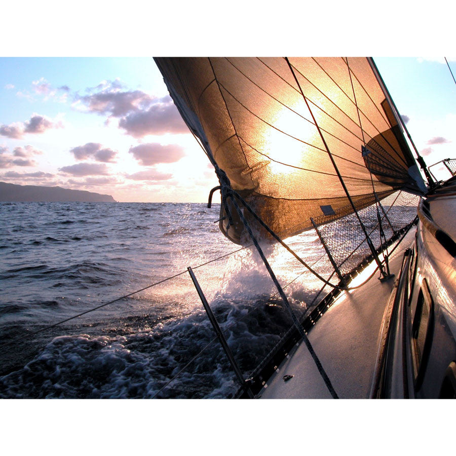 Sailing To The Sunrise Wall Mural