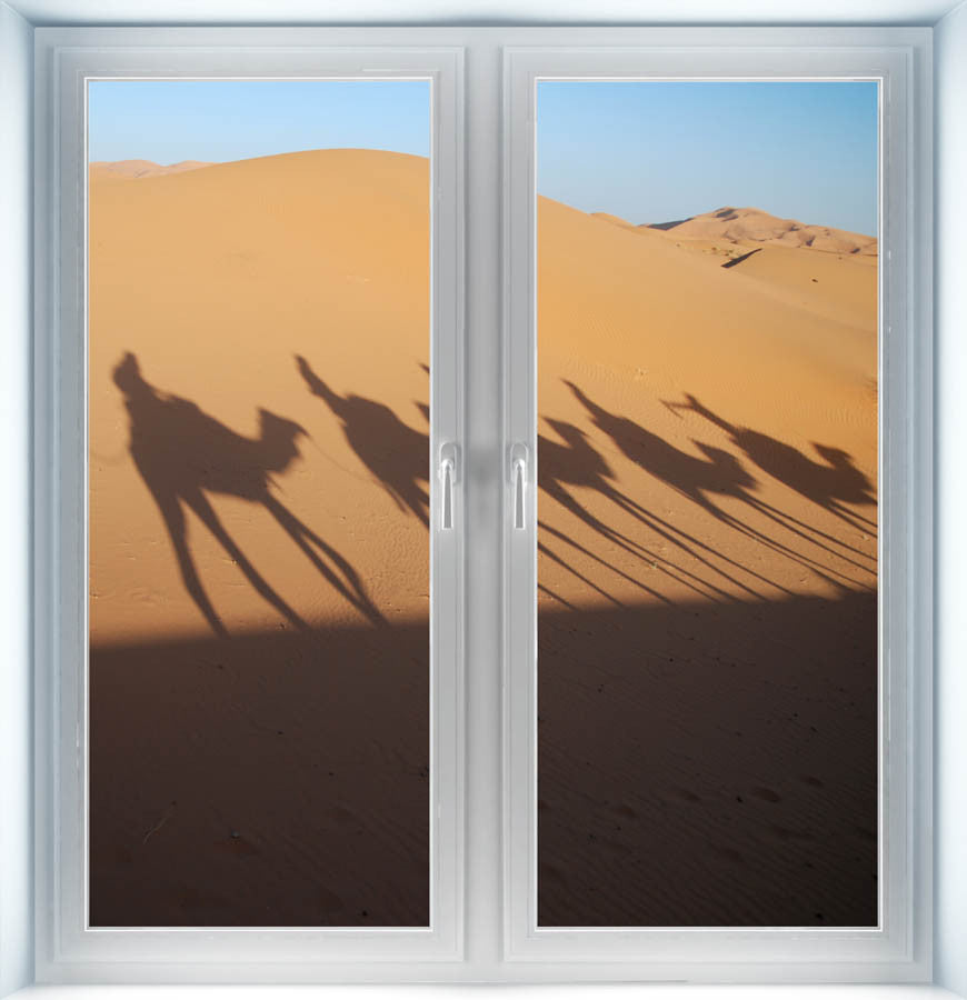 Shadow of Camel Riders Instant Window